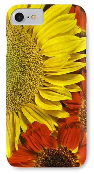 Brilliant Autumn IPhone Case by Elsa Marie Santoro