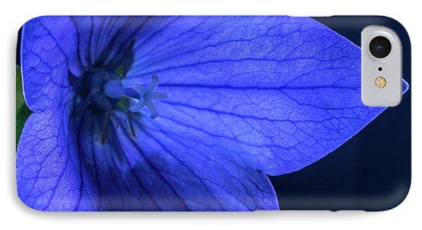 Brilliant Deep Blue Balloon Flower IPhone Case by Douglas Barnett