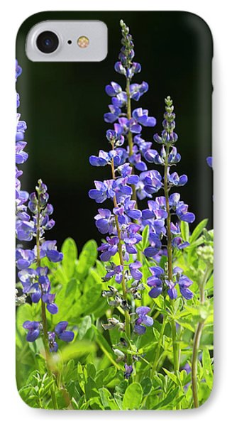 IPhone Case featuring the photograph Brilliant Lupines by Elvira Butler