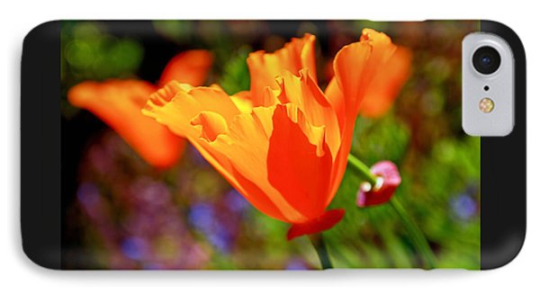 IPhone Case featuring the photograph Brilliant Spring Poppies by Rona Black