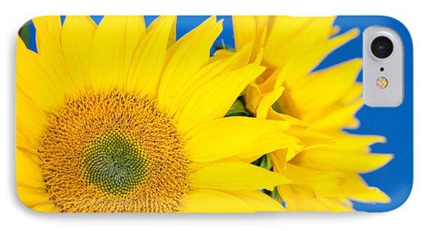 Brilliant Sunflowers IPhone Case