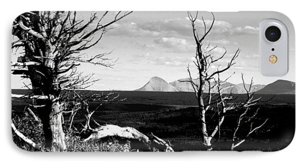 Bristle Cone Pines With Divide Mountain In Black And White IPhone Case