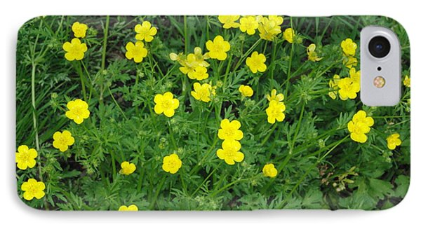 Bristly Buttercup IPhone Case by Robyn Stacey