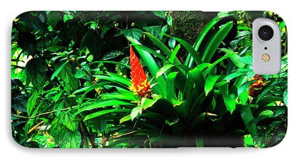 Bromeliads El Yunque  Phone Case by Thomas R Fletcher