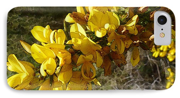 Broom In Bloom IPhone Case by Jean Bernard Roussilhe