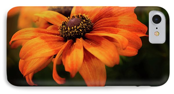 IPhone Case featuring the photograph Brown Eyed Susan by Mary Jo Allen
