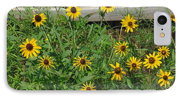 Brown Eyed Susans IPhone Case by Robyn Stacey