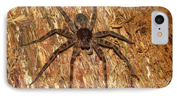 Brown Fishing Spider Phone Case by Joshua Bales