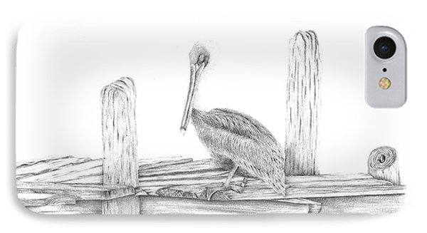 Brown Pelican IPhone Case by Patricia Hiltz