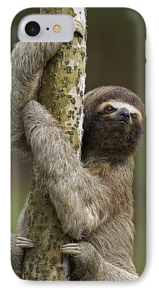 Brown-throated Three-toed Sloth Phone Case by Ingo Arndt