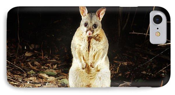 Brush-tailed Possum IPhone Case