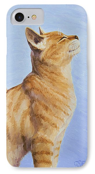 Brushing The Cat IPhone Case by Crista Forest