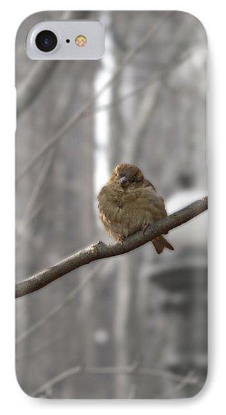 Bryant Park Bird Nyc IPhone Case