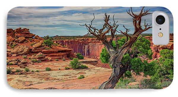 Buck Canyon Overlook IPhone Case by Rick Berk