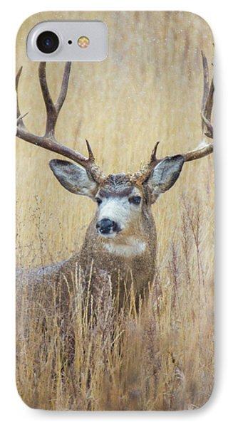 Buck In Snow IPhone Case by John De Bord