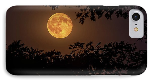 IPhone Case featuring the photograph Buck Moon 2016 by Everet Regal