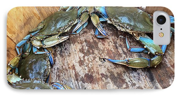 IPhone Case featuring the photograph Bucket Of Blue Crabs by Jennifer Casey