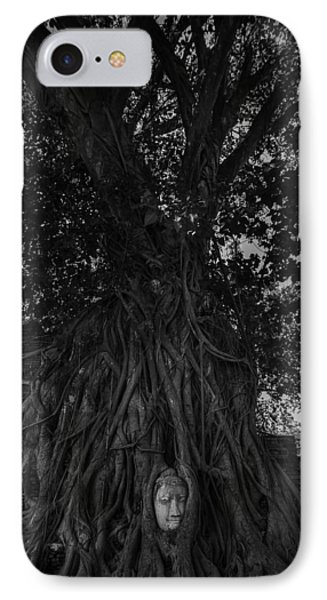 Buddha's Head Entwined In Banyan Tree Roots IPhone Case