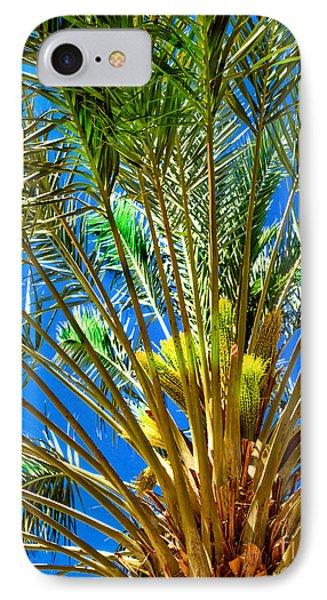Budding Medjool Date Tree IPhone Case by Robert Bales