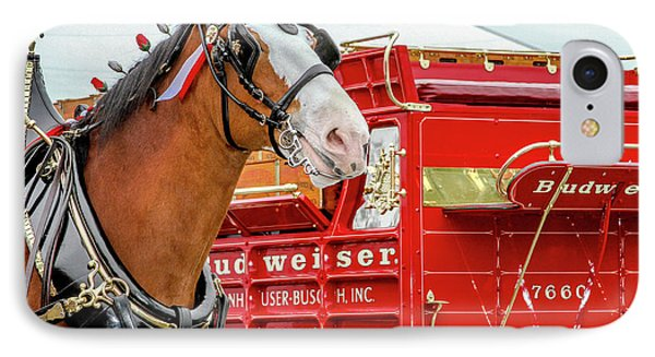 Budweiser Clydesdale In Full Dress IPhone Case by Bill Gallagher