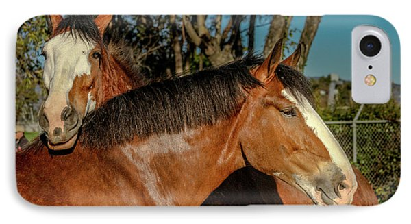 IPhone Case featuring the photograph Budweiser Clydesdales  by Bill Gallagher