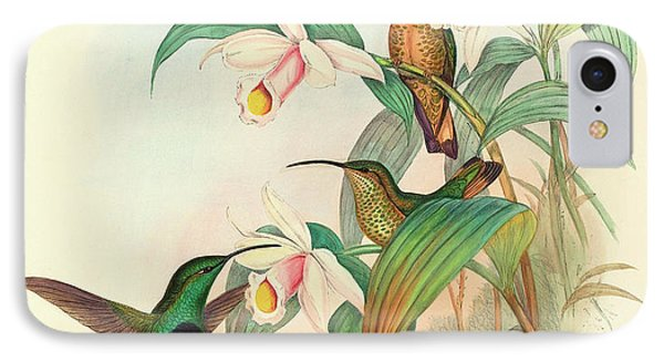 Buff Tailed Velvet Breast IPhone Case by John Gould