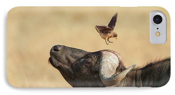 IPhone Case featuring the photograph Buffalo And Oxpecker Bird by Phyllis Peterson
