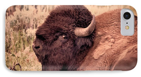 IPhone Case featuring the photograph Buffalo Eye On You by Janice Rae Pariza