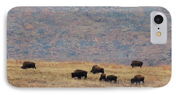 Buffalo Grazing On The Prarie IPhone Case by Richard Smith