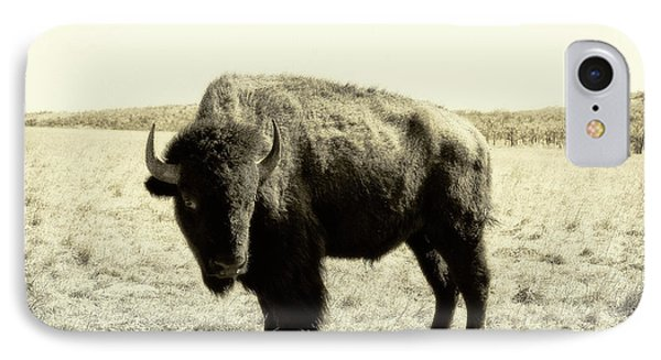Buffalo In Sepia IPhone Case by Tony Grider