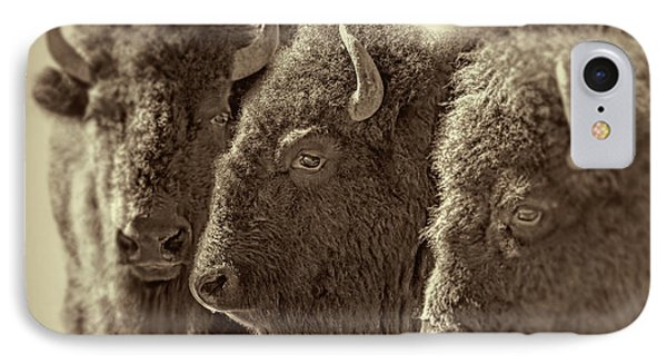 IPhone Case featuring the photograph Trio American Bison Sepia Brown by Jennie Marie Schell