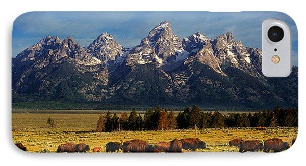 Buffalo Under Tetons IPhone Case by Leland D Howard