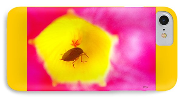IPhone Case featuring the photograph Bug In Pink And Yellow Flower  by Ben and Raisa Gertsberg