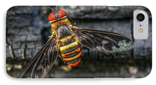 Bug With Red Eyes IPhone Case