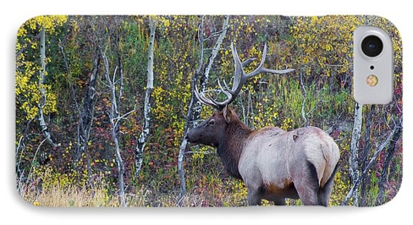 IPhone 7 Case featuring the photograph Bull Elk by Aaron Spong