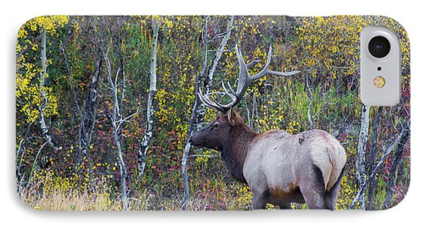 IPhone Case featuring the photograph Bull Elk by Aaron Spong