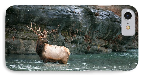 IPhone Case featuring the photograph Bull Elk Crossing The Buffalo River by Michael Dougherty