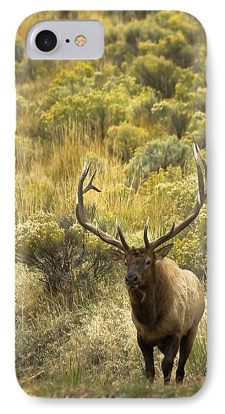 IPhone Case featuring the photograph Bull Elk by Roger Mullenhour