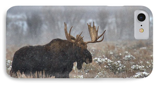 IPhone Case featuring the photograph Bull Moose In The Fog by Adam Jewell