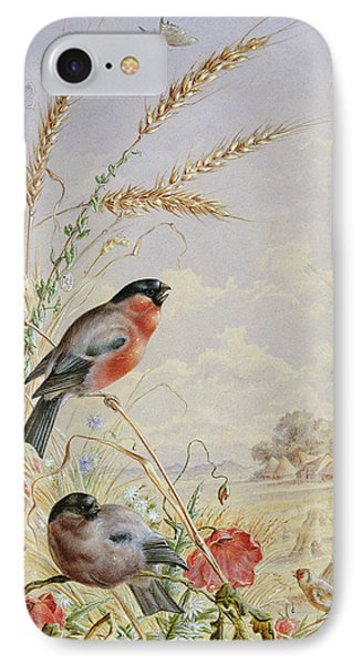 Bullfinches In A Harvest Field IPhone 7 Case by Harry Bright