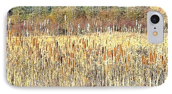 Bullrushes In Late November IPhone Case by Tobeimean Peter