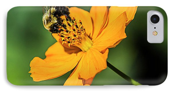 Bumble Bee And Flower IPhone Case
