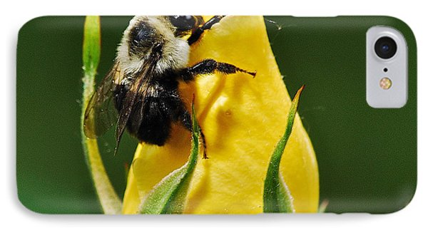 Bumble Bee On Rose  Phone Case by Michael Peychich