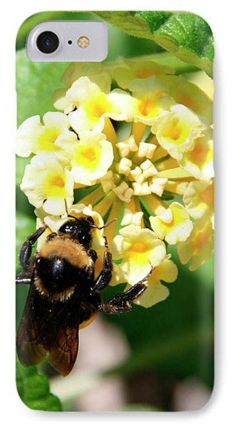 Bumble Bee On Yellow Flowers IPhone Case by George Jones