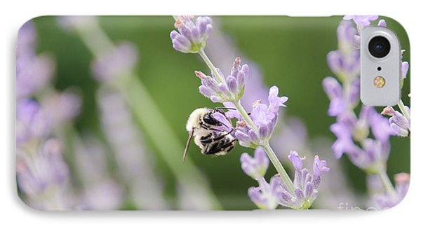 IPhone Case featuring the photograph Bumblebee On The Lavender Field 2 by Andrea Anderegg