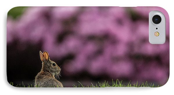 Bunny In The Yard IPhone Case