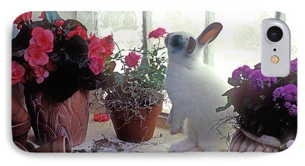 Bunny In Window IPhone Case