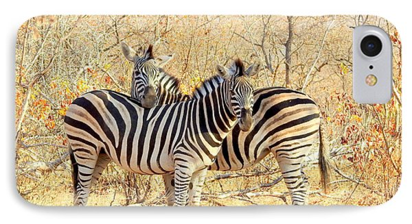 Burchells Zebras IPhone Case