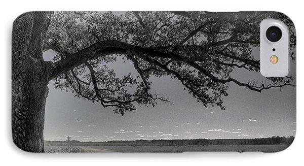 Burr Oak Tree IPhone Case by Jane Linders