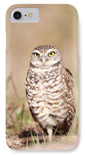 Burrowing Owl IPhone Case by Brian Magnier